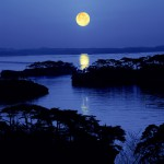 松島が「日本百名月」の地に選ばれました。